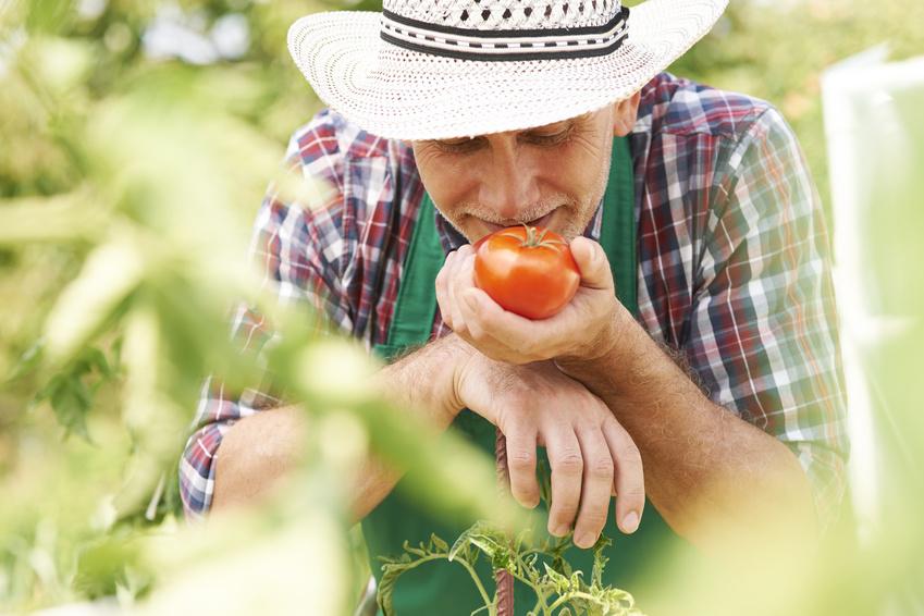 Agriculture et environnement